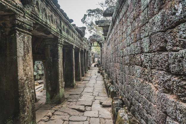 Ruïnes van verlaten tempel - angkor wat
