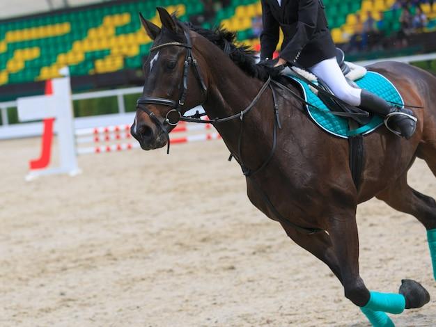 Ruiter op het paard springt op het stadion op de achtergrond van de tribunes van de toeschouwers