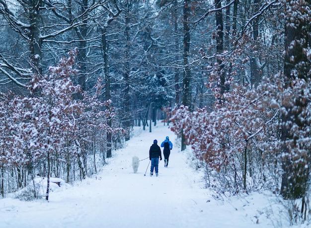 Running vrouw skiën jongen en hond in het bos