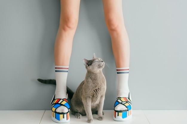 Russische blauwe kat die omhoog mooie vrouwelijke benen in kleurrijke modieuze hoge sandalen van het wigleer op witte lijst bekijken. vrouwen dragen stijlvolle zomerzool met hoge zool.