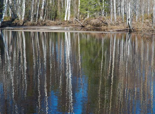 Russische landschap overstromingen van de lente op de rivier, weerspiegeling van bomen in water