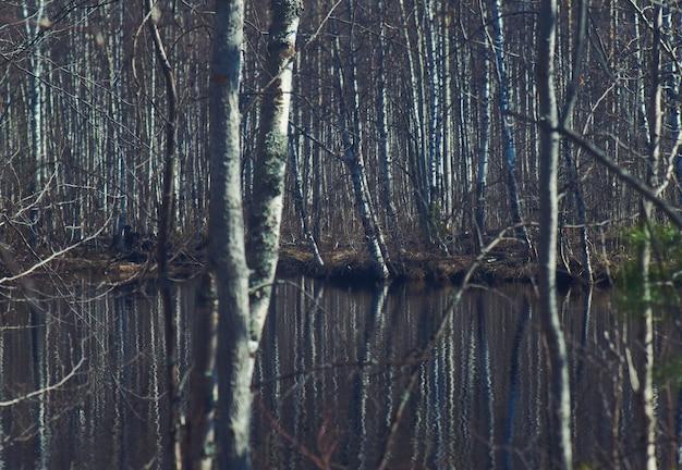 Russische landschap overstromingen van de lente op de rivier