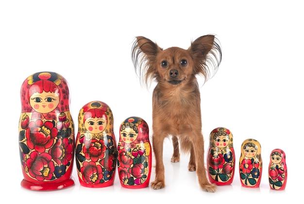Russische poppen en russkiy speelgoed