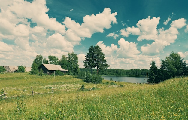 Russische zomer weidearkhangelsk regio rusland