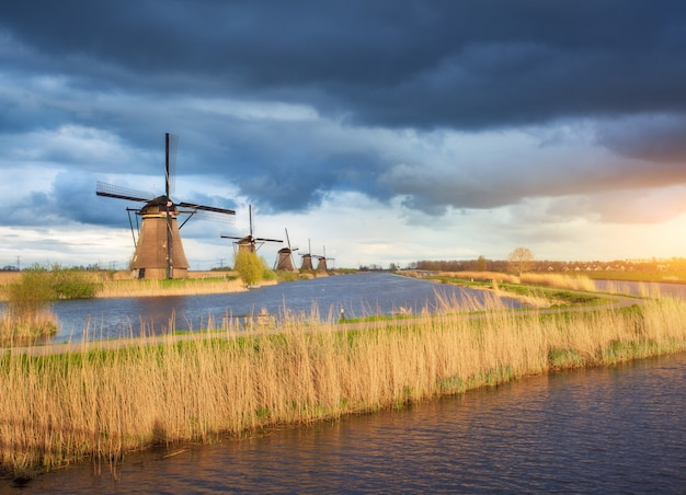 Rustiek landschap met traditionele nederlandse windmolens