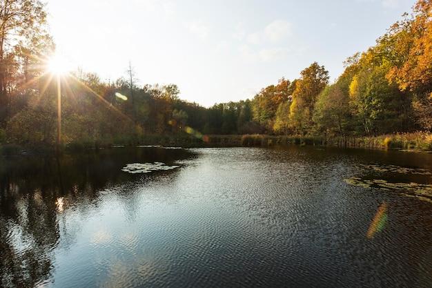 Rustig en mooi landschap bij daglicht