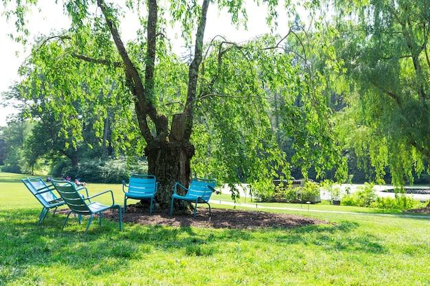 Rustig zomerpark op zonnige dag.