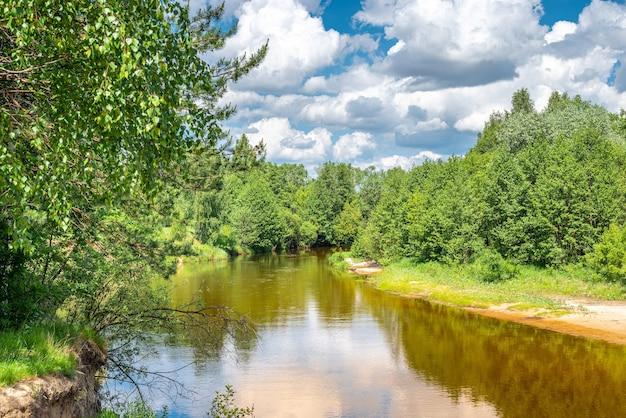 Rustige rivier die zachtjes door boslandschap stroomt. landschap met bos aan kust van rivier, vijver of rivier in de zomer. natuur landschapsfotografie