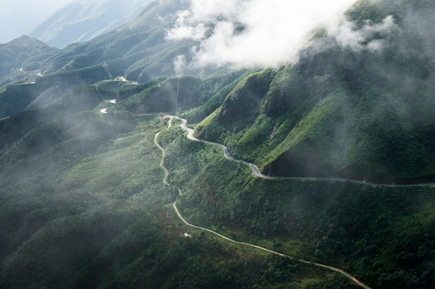 Ruwe gebogen weg in groene vallei met mistig
