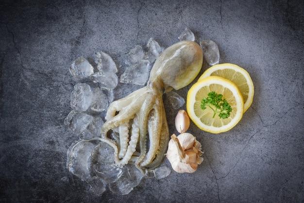 Ruwe pijlinktvis op ijs met saladekruiden, citroenknoflook op de donkere plaat