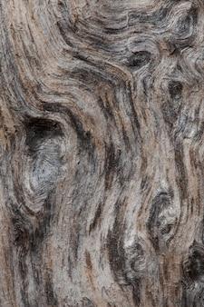 Ruwe textuur van gebogen drijfhout