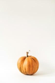 Ruwe verse oranje gemberpompoen op wit. minimaal seizoensgebonden herfst herfstvoedselconcept