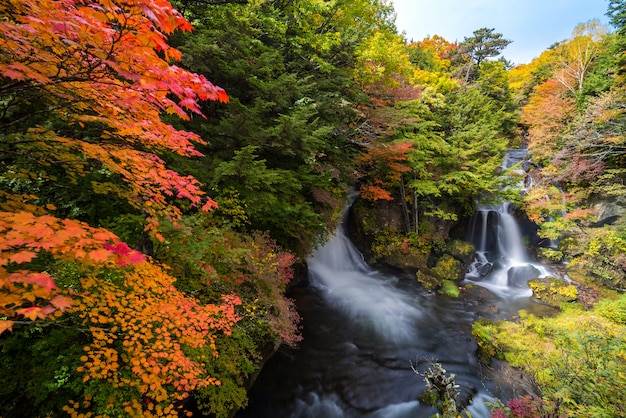Ryuzu waterfall herfst bos nikko japan