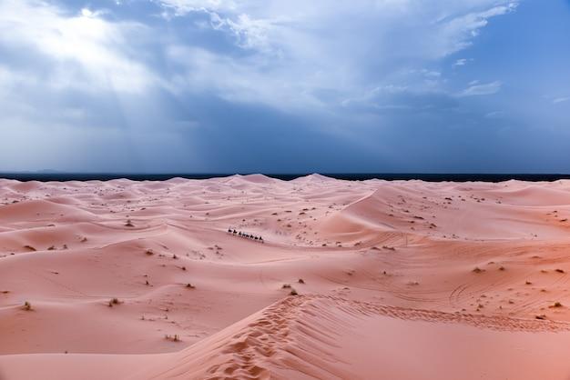 Sahara woestijn in marrakech, marokko