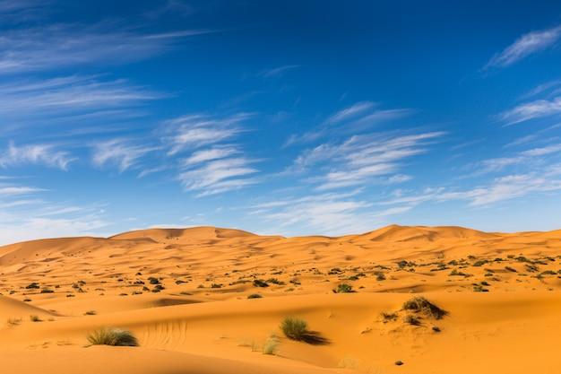 Sahara woestijn, marokko