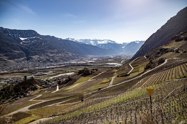 Saillon zwitserland kasteel saillon pierre avoi en wijngaarden in de lente farinetwandeling