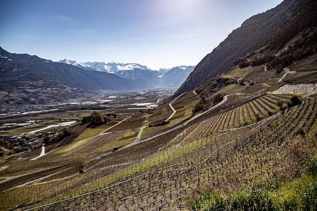 Saillon zwitserland martigny crevasse kasteel saillon wijngaarden pierre avoi in de lente farinetwandeling