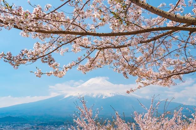 Sakura-kersenbloesem met mt. fuji, japan in de lente.