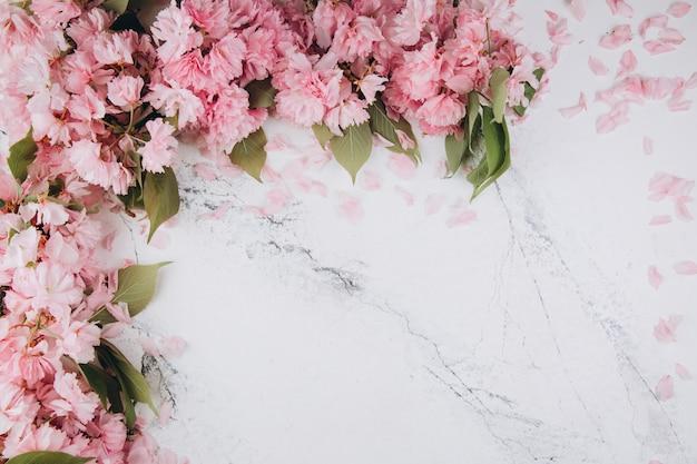 Sakurabloemen en bloemblaadjes op marmeren achtergrond