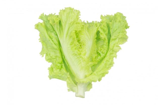 Salade blad. sla op wit wordt geïsoleerd dat