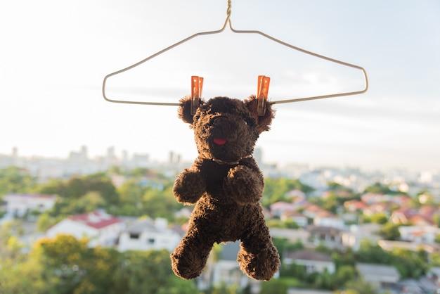 Samen hangend en uitdrogen hond en beer poppenvriend na was met zonlicht
