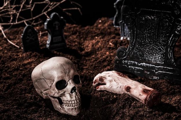 Samenstelling met schedel en afgesneden hand Gratis Foto