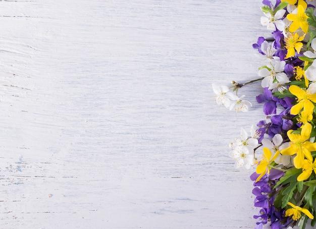 Samenstelling met wilde bosviooltjes op een witte houten ondergrond met lege ruimte voor tekst. lente feestelijke achtergrond.