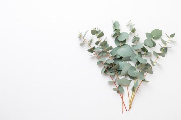 Samenstelling van bloemen en eucalyptus