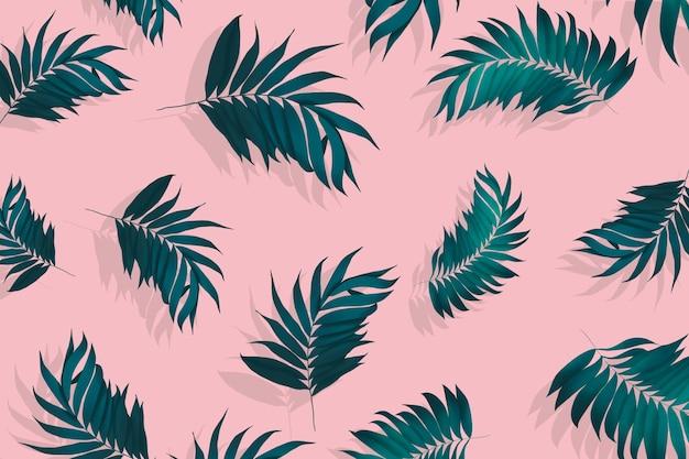 Samenstelling van de achtergrond van palmbladeren