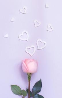 Samenstelling van de lente met roos en harten op een pastel achtergrond