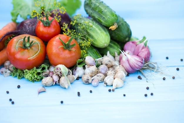 Samenstelling van de russische traditionele groenten. bovenaanzicht.