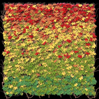 Samenstelling van herfstbladeren. 3d illustratie