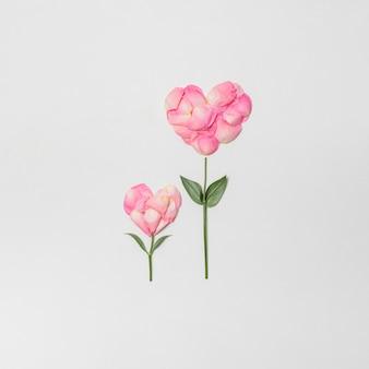 Samenstelling van roze bloemen in de vorm van harten