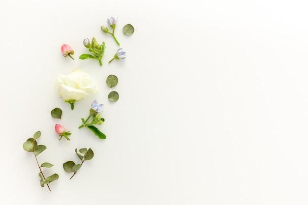 Samenstelling van roze en witte zomerbloemen