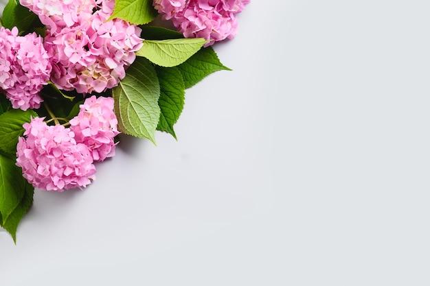 Samenstelling van verse roze hydrangea hortensiabloem op grijs. bloemen bezorgen. kopieer ruimte. bovenaanzicht.