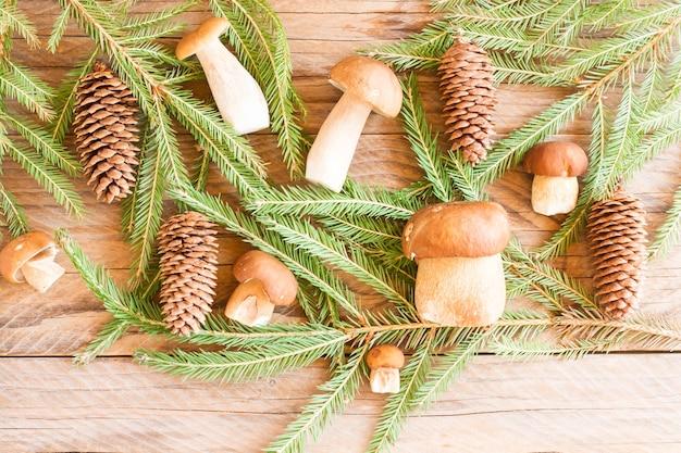 Samenstelling van witte champignons en sparren takken met kegels op de dorpstafel.