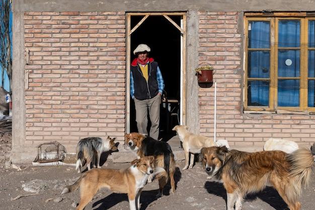 San rafael, argentinië, 28 juli 2021: landman, in latijns-amerika, met zijn honden.