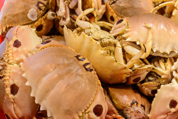 Sanya, hainan/china - 7 januari 2020: chinees straatvoedsel. straat handel. chinese soorten verse zeevruchten op een aziatische vismarkt in sanya, provincie hainan, china. opschrift: naam eten.