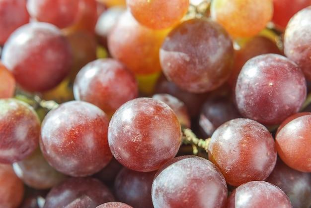 Sappige druivenbessen in de zon