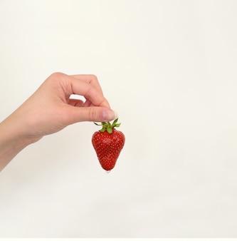 Sappige rijpe aardbei in de hand van een vrouw. druppel water of sap druipt van aardbeien.