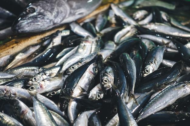 Sardines op een vismarkt