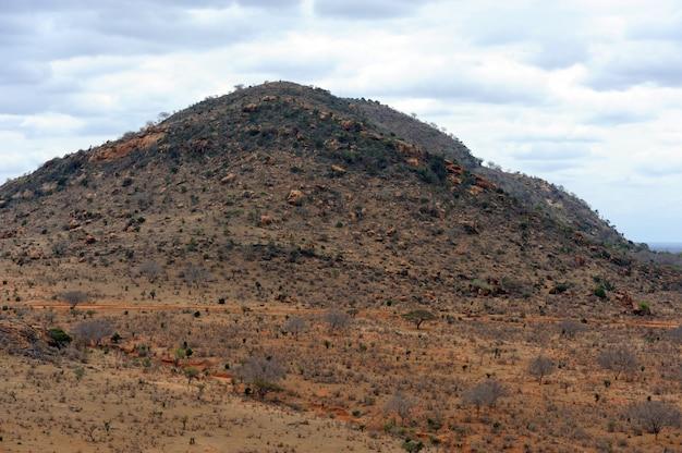 Savannelandschap in het nationale park in kenia