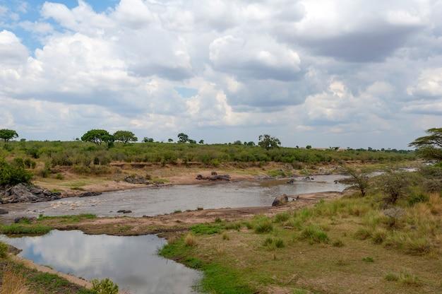 Savannelandschap met rivier in het nationale park van kenia, afrika