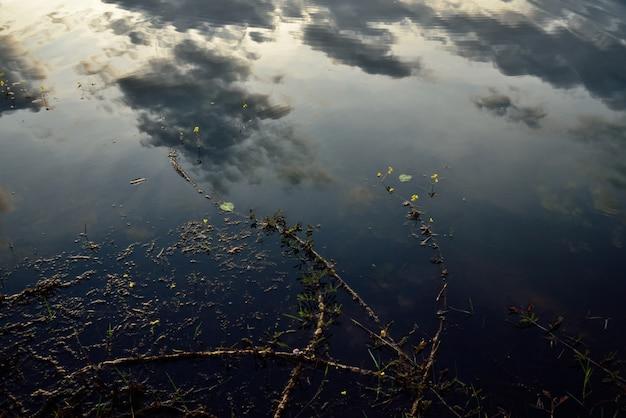 Schaduw nachtelijke hemel op water
