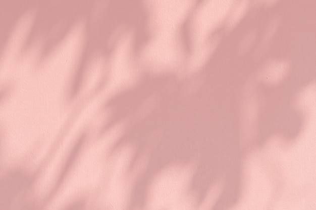 Schaduw van bladeren op een roze muur