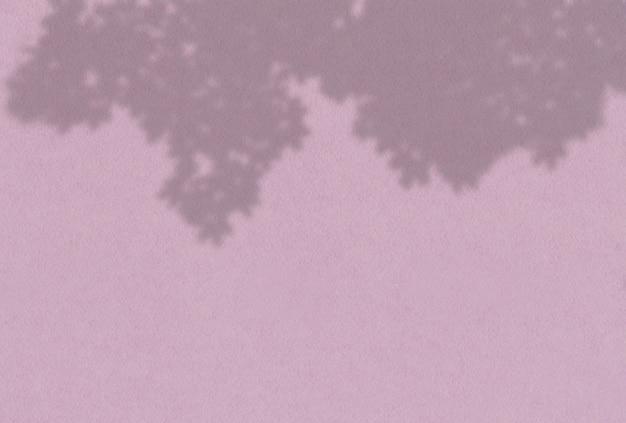 Schaduw van boombladeren op een lila muur