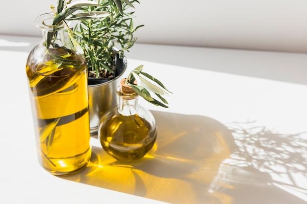 Schaduw van olijfolieflessen met rozemarijnfles op de vloer