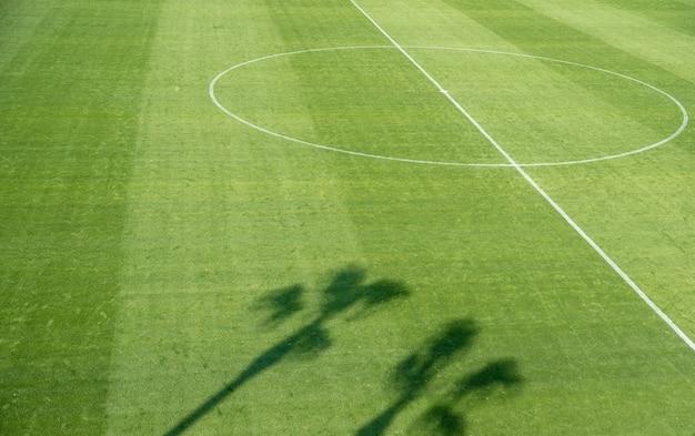 Schaduw van palmbomen op een voetbalveld gazon