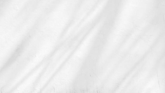 Schaduw van takken en bladeren op een witte betonnen muur.