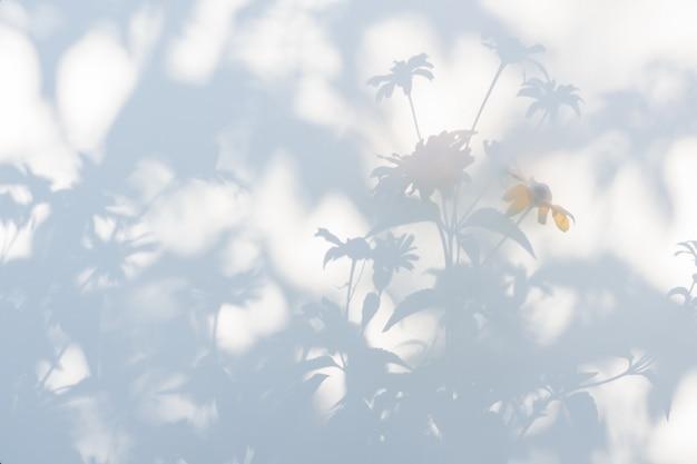 Schaduwen van bloemen op een witte semi-transparante doek